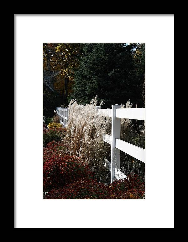 Nature Framed Print featuring the photograph Autumn Is In The Air by Kay Novy