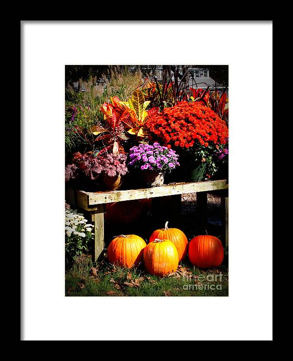 Autumn Framed Print featuring the photograph Autumn Market by Carol Groenen