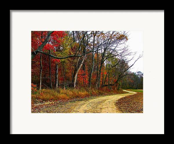 Bottomlands Framed Print featuring the photograph Autumn On Bottomland Road by Julie Dant