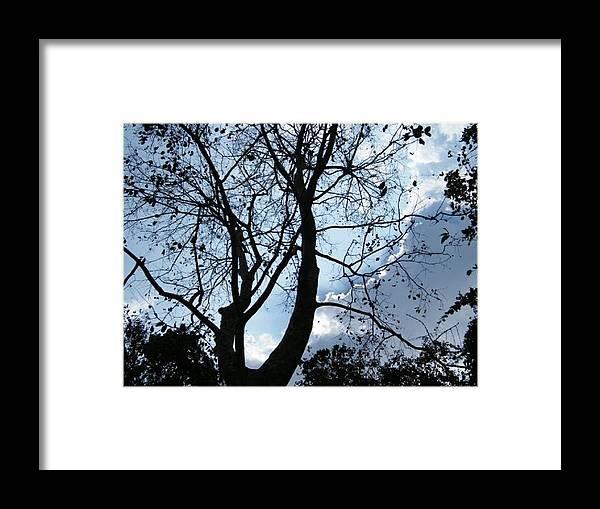 Framed Print featuring the photograph Autumn by Prashant Ambastha