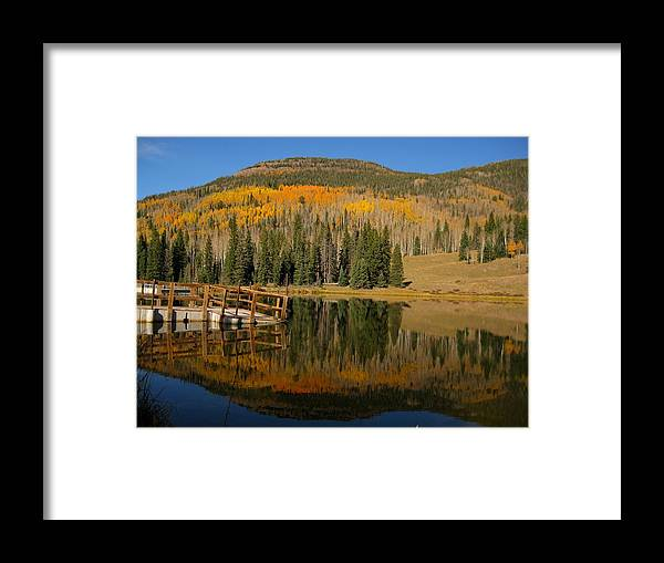 Fall Framed Print featuring the photograph Autumn Reflections by Amara Roberts