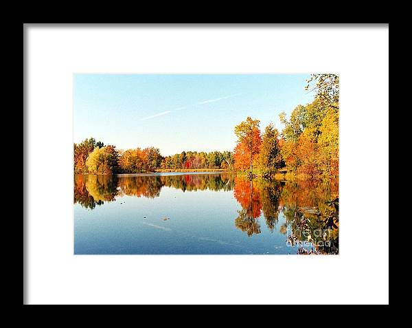 Lake Framed Print featuring the photograph Autumn Splendor by Crissy Sherman