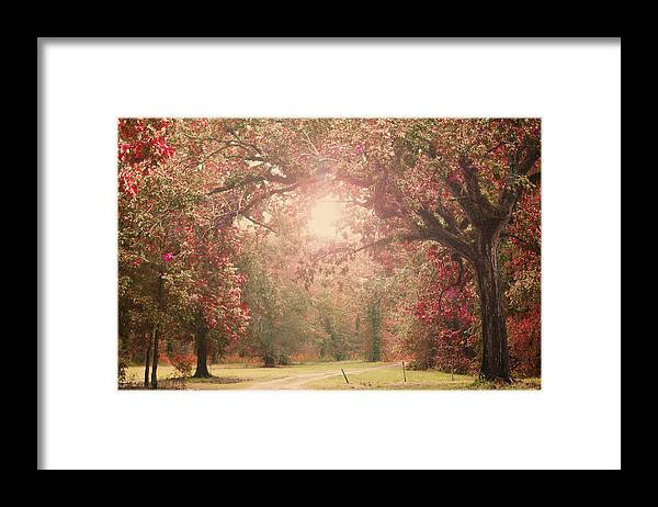 Enchanted Framed Print featuring the photograph Autumn Splendor by Southern Tradition