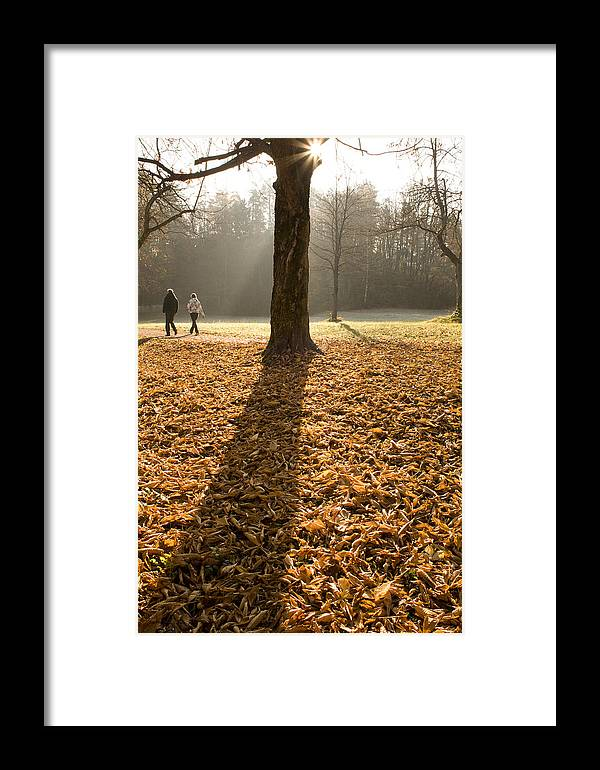 Autumn Framed Print featuring the photograph Autumn Stroll by Ian Middleton