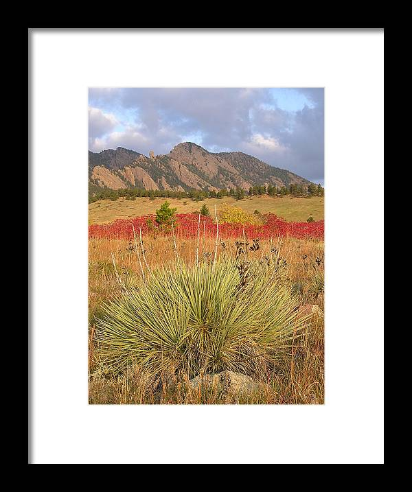 Landscape Framed Print featuring the photograph Autumn Sunrise Along The Mesa Trail by John Myers