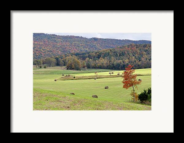 Landscapes Framed Print featuring the photograph Autumn Valley Hay Bales by Jan Amiss Photography