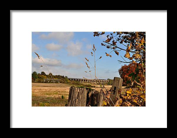 Autumn Framed Print featuring the photograph Autumn View by Kevin Askew