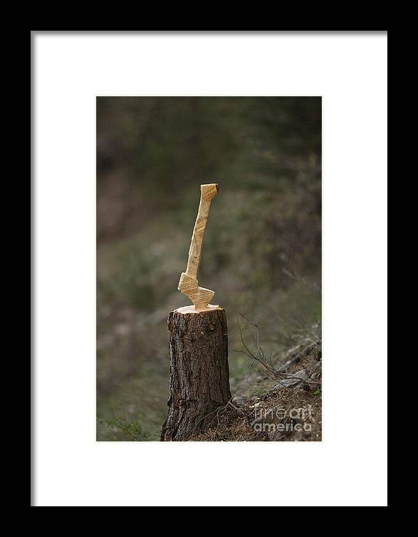 Art Framed Print featuring the photograph Axe by Alex Rowbotham