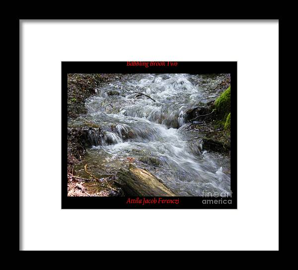 Brook Framed Print featuring the photograph Babbling Brook Two by Attila Jacob Ferenczi
