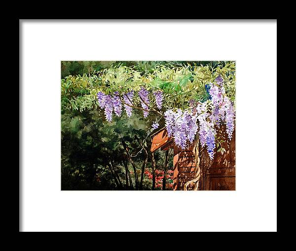 Watercolor Purple Wisteria Framed Print featuring the painting Backyard Wisteria by Peter Sit