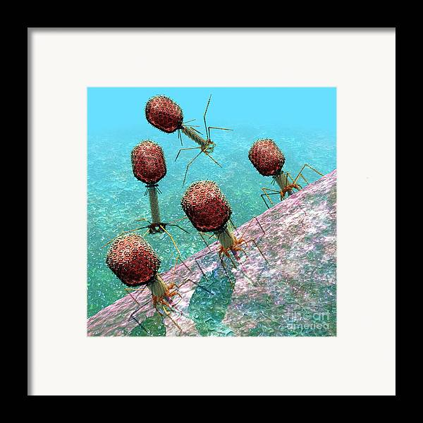 Bacteria Framed Print featuring the digital art Bacteriophage T4 Virus Group 1 by Russell Kightley