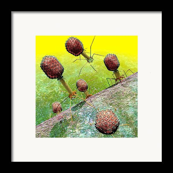 Bacteria Framed Print featuring the digital art Bacteriophage T4 Virus Group 2 by Russell Kightley