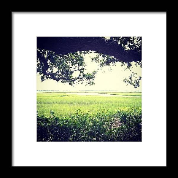 Bhi Framed Print featuring the photograph Bald Head Island Marsh by Monica Wilson