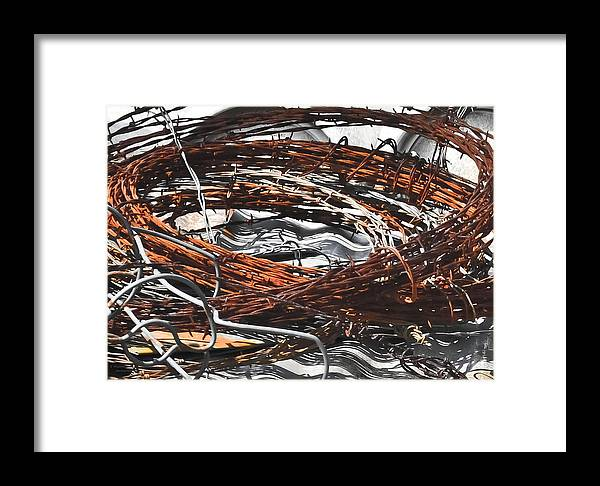 Barbedwire Framed Print featuring the photograph Barbed by Teresa Dixon