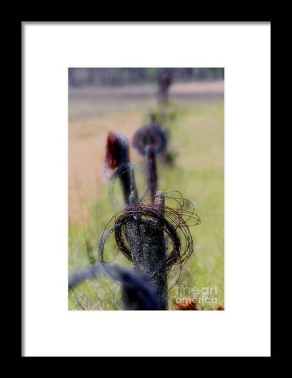 Framed Print featuring the photograph Barbed Wire by Douglas Stucky