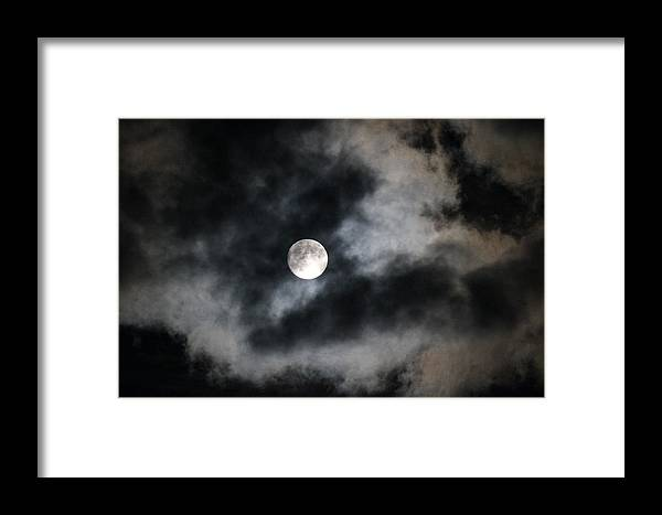 Moon Framed Print featuring the photograph Bark At The Moon by Tricia Janush