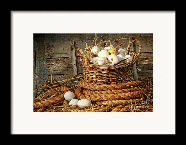 Agriculture Framed Print featuring the photograph Basket Of Eggs On Straw by Sandra Cunningham