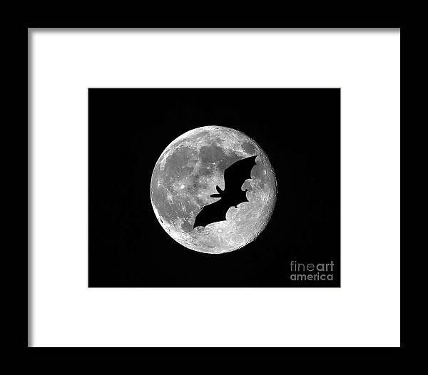 Moon Framed Print featuring the photograph Bat Moon by Al Powell Photography USA