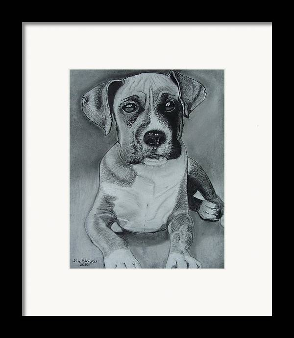 Dog Framed Print featuring the painting Baxter by Kim Shayler