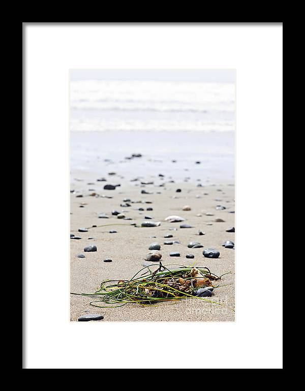 Pacific Framed Print featuring the photograph Beach Detail On Pacific Ocean Coast Of Canada by Elena Elisseeva