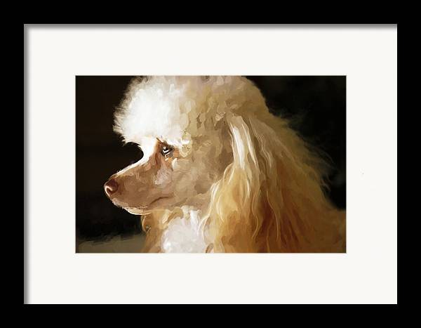 Dogs Framed Print featuring the digital art Bella by Mickey Clausen