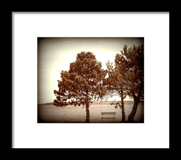 Bench Framed Print featuring the photograph Bench By The Sea by Christy Beal