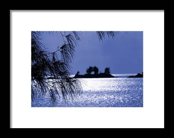 Mangrove Bay Framed Print featuring the photograph Bermuda Blues by Mike Flynn