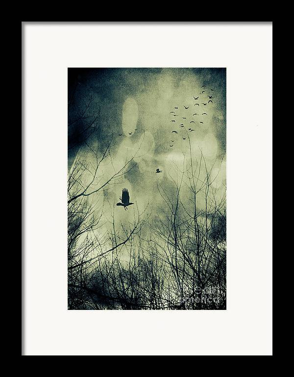 Atmosphere Framed Print featuring the photograph Birds In Flight Against A Dark Sky by Sandra Cunningham