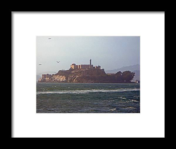 Alcatraz Framed Print featuring the photograph Birds In Free Flight At Alcatraz by Carl Deaville