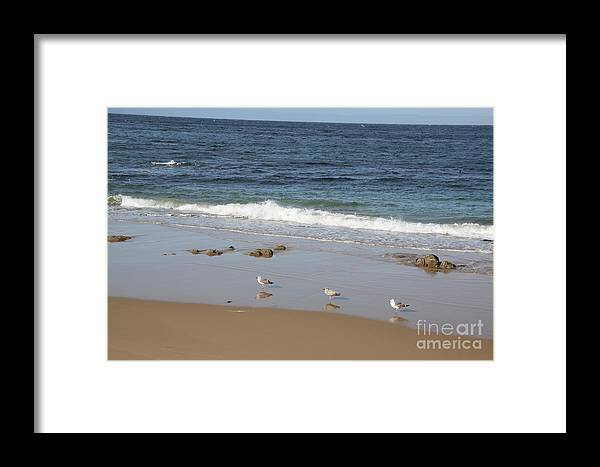 Pacific Ocean Framed Print featuring the photograph Birds Of A Feather by Corene Soileau