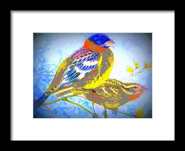 Digital Art Framed Print featuring the digital art Birds Of Color by K Arthur