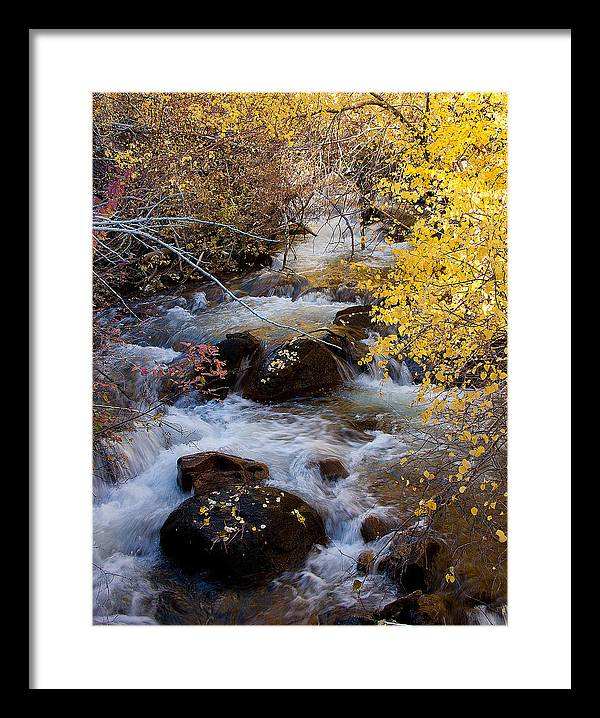 Landscape Framed Print featuring the photograph Bishop Creek-2 by Howard Ehrlich