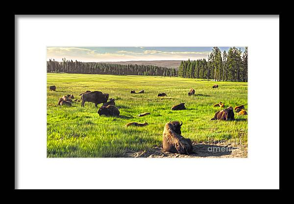 Bison Framed Print featuring the painting Bison Herd In Yellowstone by Gregory Dyer