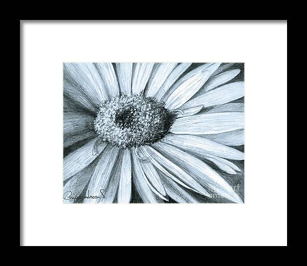 Flower Framed Print featuring the drawing Black White Gerber by Phyllis Howard