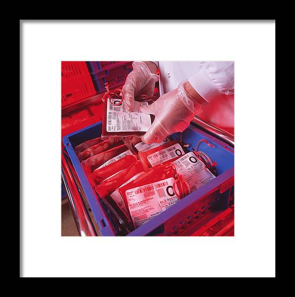 Blood Bags Framed Print featuring the photograph Blood Storage by Tek Image