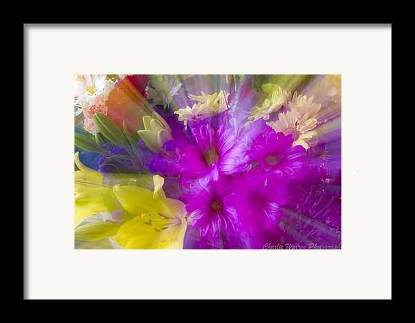 Flower Framed Print featuring the photograph Bloom Zoom by Charles Warren