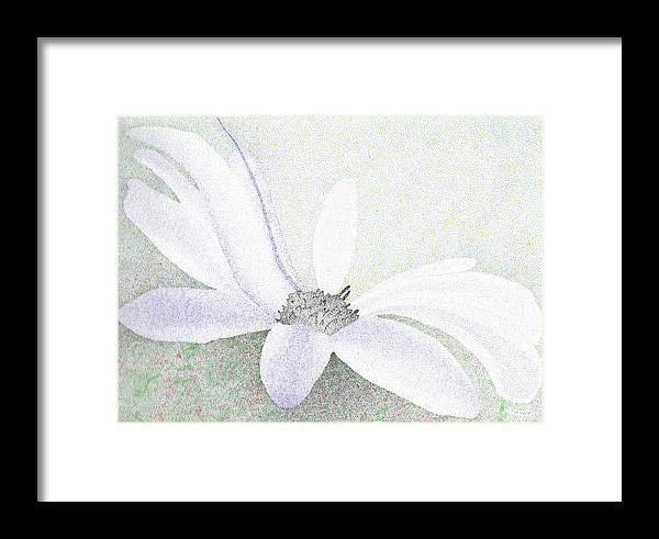 Flower Framed Print featuring the drawing Blossom by Timothy Huff