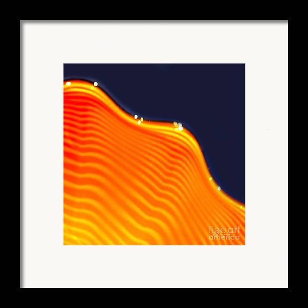 Photographs Photographs Framed Print featuring the photograph Blue And Orange by Artist and Photographer Laura Wrede