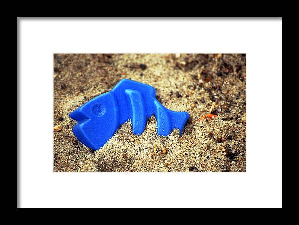 Still Life Fish Sand Box Landscape Framed Print featuring the photograph Blue Fish Swims In Sand Sea by George Hale
