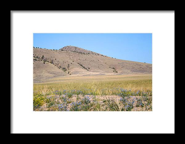 Blue Sky Photographs Framed Print featuring the photograph Blue Flax Day by C Sitton