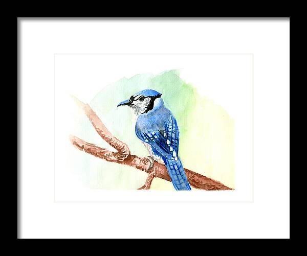 Blue Framed Print featuring the painting Blue Jay by Kyle Gray