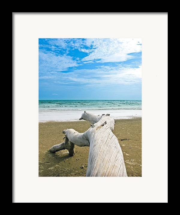 Beach Framed Print featuring the photograph Blue Sea And Sky With Log On The Beach by Nawarat Namphon