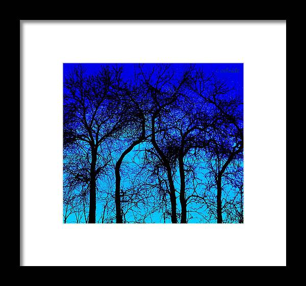 Treeline Framed Print featuring the photograph Blue Sunset by Chris Berry
