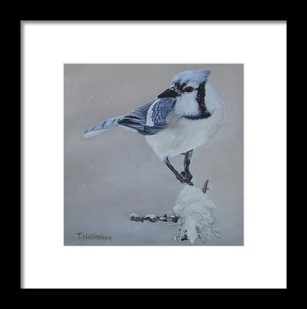 Bluejay Framed Print featuring the painting Bluejay In Winter by Traci McGlashan