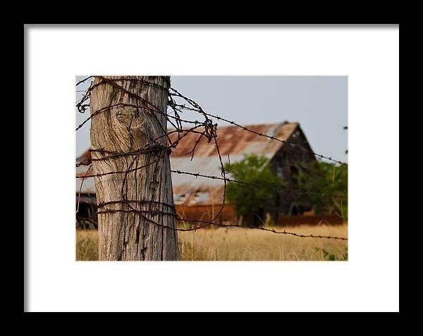 Bois D'arc Framed Print featuring the photograph Bois D'arc Barn by Lisa Moore
