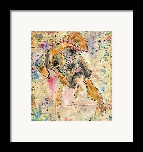 Boxer Framed Print featuring the digital art Boxer Babe by Marilyn Sholin