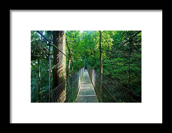 Hike Framed Print featuring the photograph Bridge by Simone Pastore