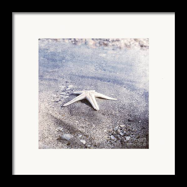 Bright Star Fish Beach Shore Sand Pebble Framed Print featuring the photograph Bright Star by Paul Grand