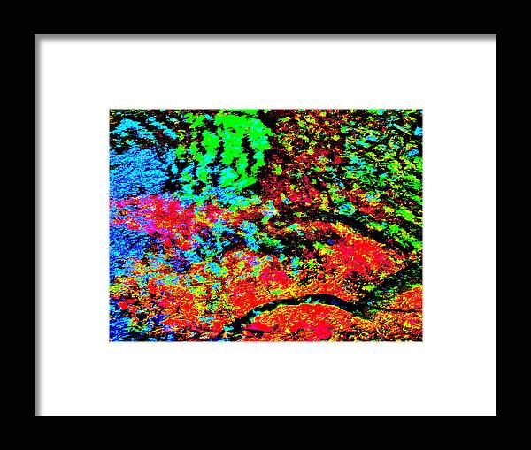 Landscape Framed Print featuring the photograph Brook Texture 152 by George Ramos