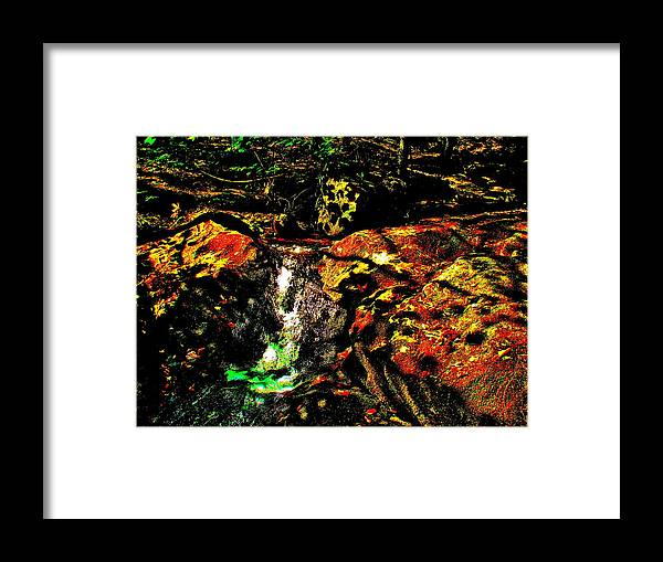 Landscape Framed Print featuring the photograph Brook Texture 162 by George Ramos